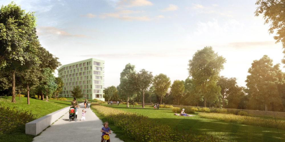 ARC19: Woods – Binst Architects
