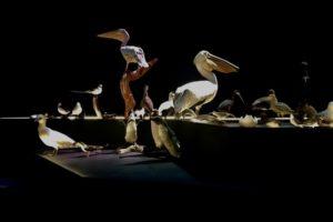 Kossmann.deJong ontwerpt twee permanente tentoonstellingszalen in vernieuwd Naturalis