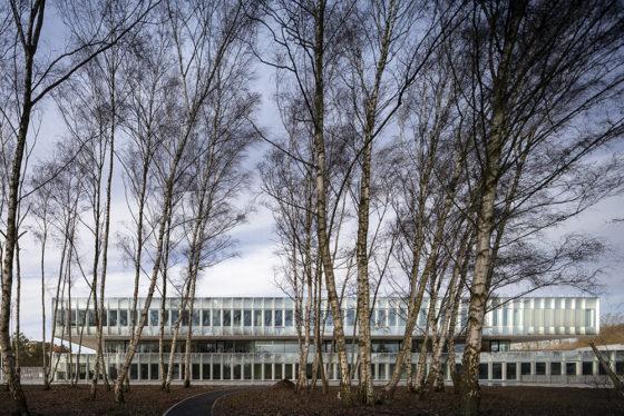 Chambre de Métiers et de l'Artisanat (CMA) Hauts-De-France in Lille door KAAN Architecten en PRANLAS-DESCOURS