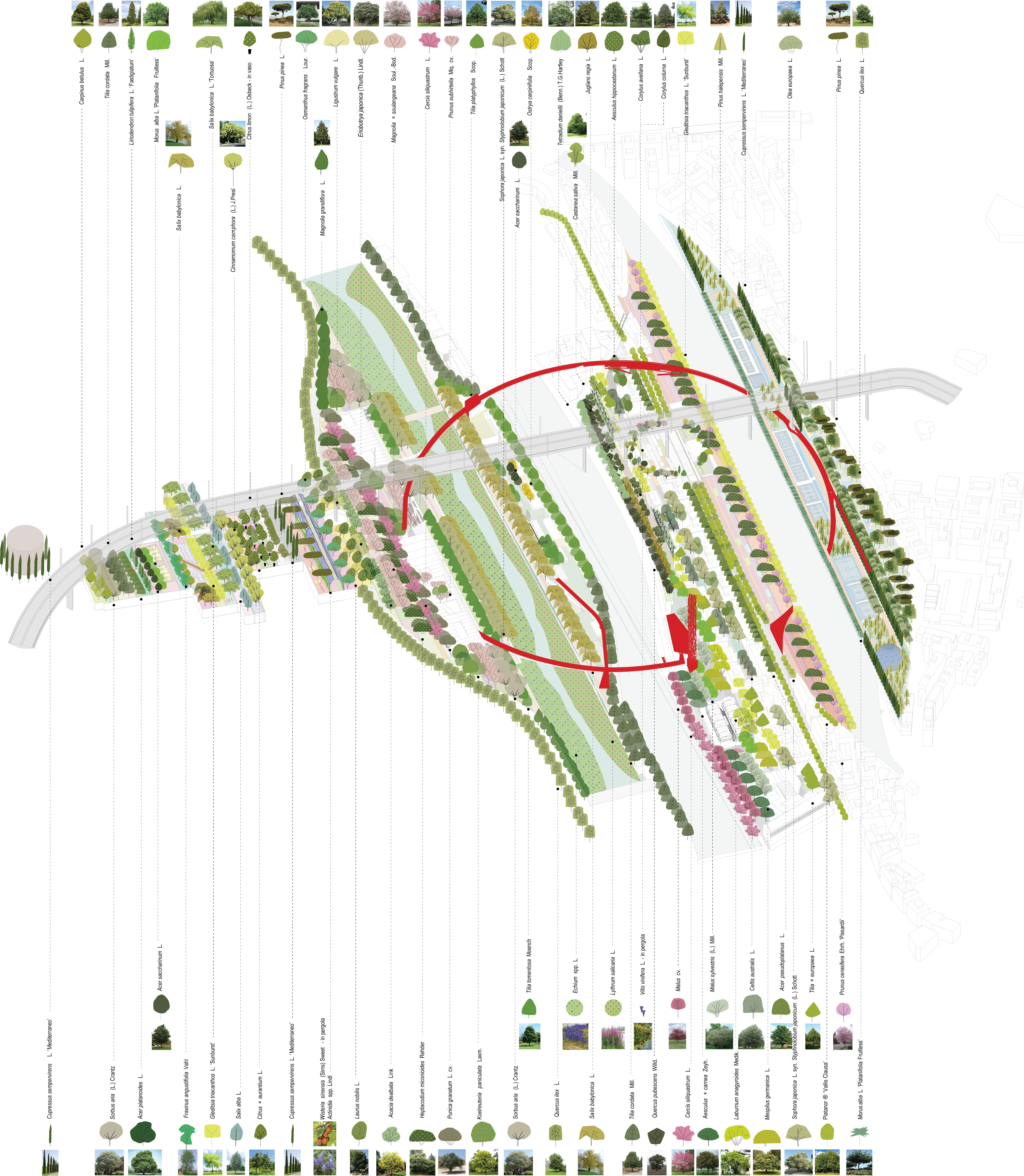 <p>Polcevera, een nieuw botatnisch stadspark</p>