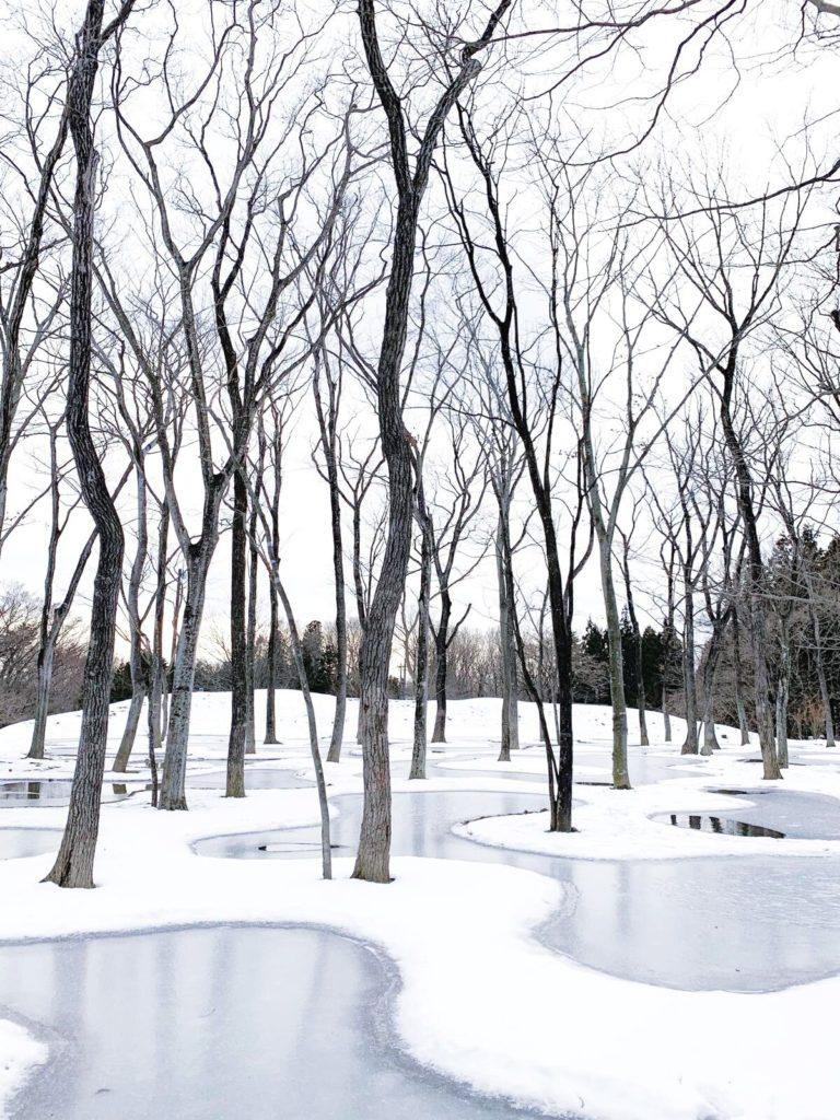 Art_Biotop van Junya Ishigami winnaar Obel Award