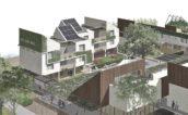Blog – Veld en volume: Het ontwerpen van een hof voor gemeenschappelijk wonen