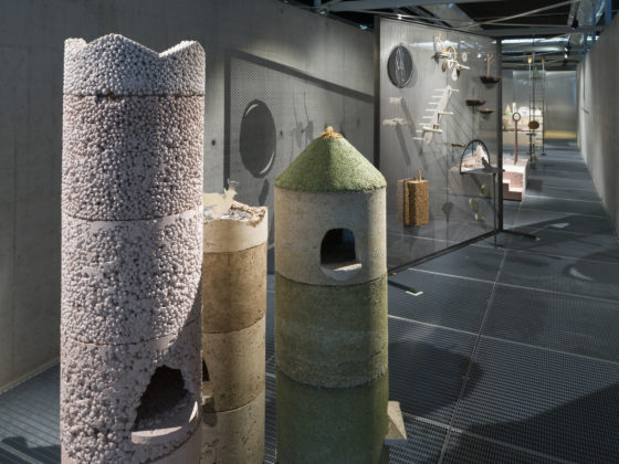 Animal Encounters installatie en lezing door Studio Ossidiana