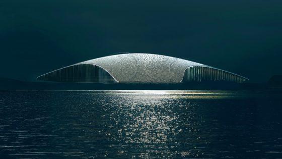 In beeld: Observatiepunt The Whale door Dorte Mandrup