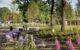 Piet Soerplein Havelte – NOHNIK architecture & landscapes