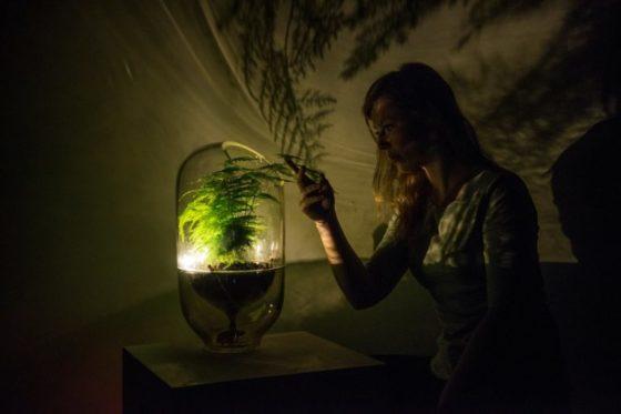 Living Light geeft licht na liefdevolle aanraking