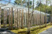 Blog – Trouwkapelletje Nagano, Japan